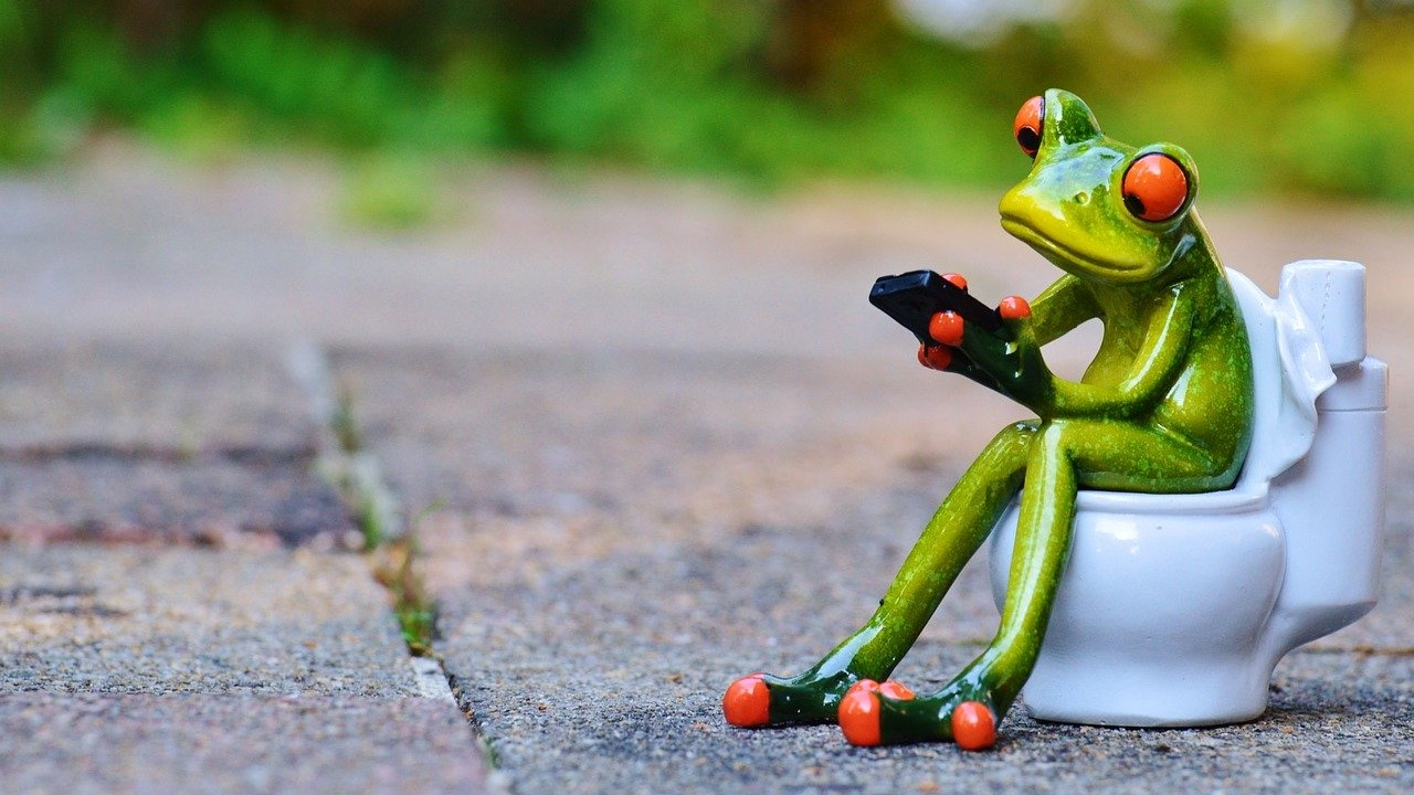 frog toilet smartphone